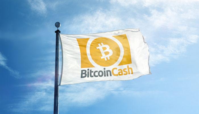 Bitcoin Cash Litecoin'i Geçmeyi Başardı
