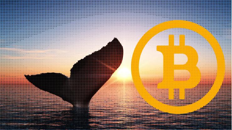 Bitcoin Balinaları Harekete Geçti