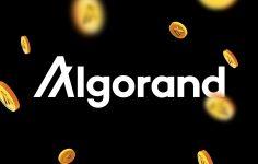 Algorand'da Heyecan Verici Gelişmeler ( Algorand V.3 )