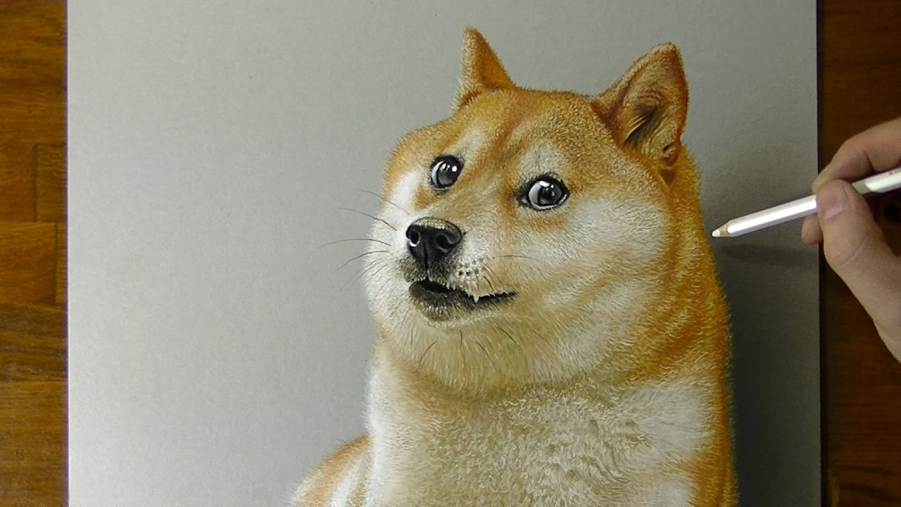 Elon Musk Dogecoin'i Tweet'ledi DOGE Yüzde 20 Yükseldi