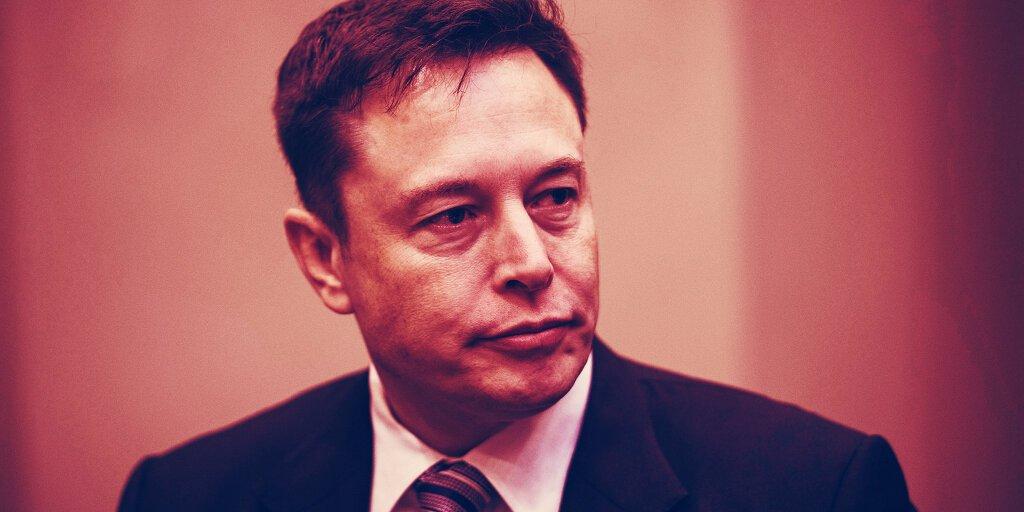 Dogecoin Geliştiricileri 2019'dan Beri Elon Musk ile Çalıştıklarını Söyledi